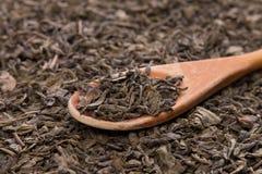 Chá verde seco Fotos de Stock