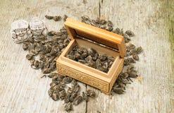 Chá verde tradicional Imagem de Stock Royalty Free
