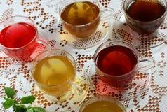 Chás Assorted da fruta/erva Imagens de Stock