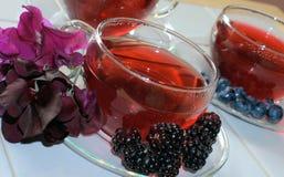 Chás da fruta/erva com fruta Fotografia de Stock