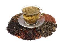 Chás verdes e folha de chá sortido Imagem de Stock Royalty Free