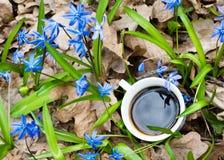 Chávena de café em flores da mola fotos de stock royalty free