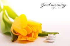 Chávena de café minúscula e tulipas amarelas Fotos de Stock Royalty Free