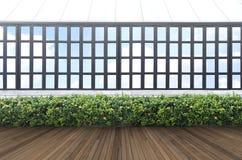 Châssis de mur et de fenêtre de feuille de vert d'IthTropical photographie stock