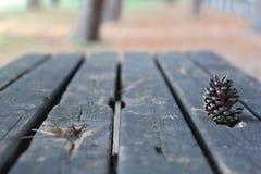 Châtaigne sur une table en bois Image stock