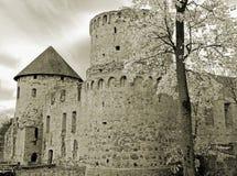 Château. Images libres de droits