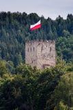 Château Antic avec des arbres en Pologne Image libre de droits
