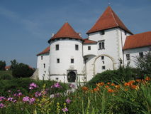 Château avec des fleurs Images libres de droits