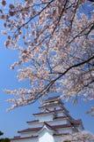 Château d'Aizuwakamatsu et fleur de cerise Image libre de droits