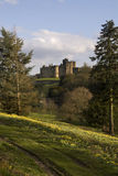 Château d'Alnwick photo stock