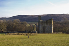 Château d'Edlingham northumberland images libres de droits