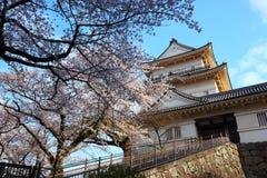 Château d'Odawara et fleur de cerise Images libres de droits