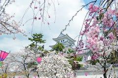 Château d'Ogaki à Gifu photo stock