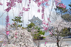 Château d'Ogaki à Gifu images libres de droits