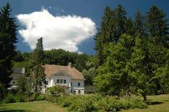 Château dans la forêt image libre de droits