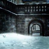 Château dans la neige Photos libres de droits
