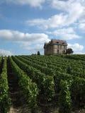 Château dans la vigne Photos libres de droits