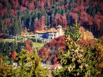 Château dans le Forrest Photo stock