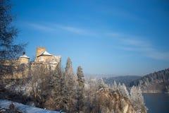 Château dans Niedzica, Pologne Photo libre de droits