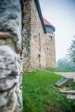Château dans un brouillard d'été de ville de Karlovac image libre de droits