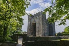 Château de Bunratty et parc de gens photos libres de droits