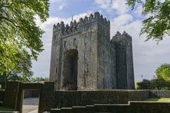 Château de Bunratty et parc de gens photos stock