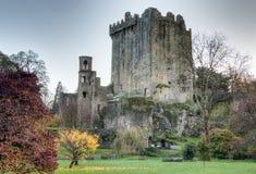 Château de cajolerie dans le liège du comté, Irlande Photos stock