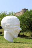 Château de Devin près de Bratislava. La Slovaquie Image libre de droits