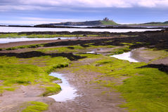 Château de Dunstanburgh de plage d'Embleston Photo stock