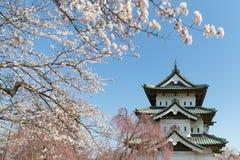 Château de Hirosaki et arbre de fleurs de cerisier de Sakura photos libres de droits