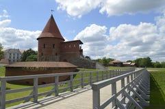Château de Kaunas Image stock