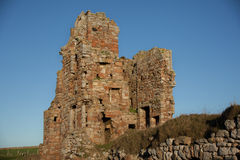 Château de Newark Image libre de droits