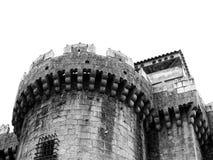Château de passiflore en noir et blanc photographie stock libre de droits