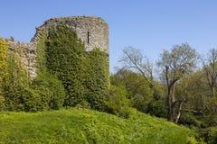 Château de Pevensey dans le Sussex est images stock