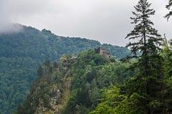 Château de Poenari, connu sous le nom de citadelle de Poenari, montagnes vertes photos stock