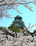 Château de Sakura et d'Osaka Photographie stock libre de droits