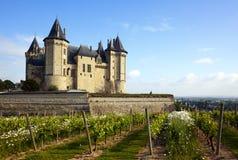 Château de Saumur con le vigne in priorità alta Fotografia Stock Libera da Diritti