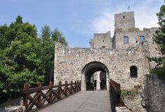 Château de Strecno, Slovaquie Photos stock