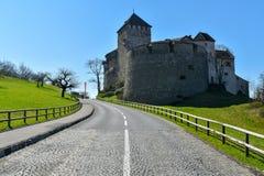 Château de Vaduz - la Liechtenstein Photographie stock libre de droits