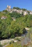 Château de Vaison-La-laitue romaine Photographie stock