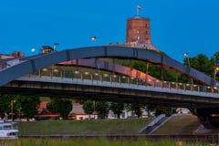 Château de Vilnius Gediminas Image libre de droits