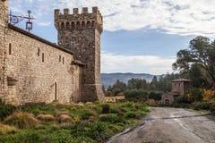 Château de vin Photographie stock