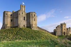 Château de Warkworth au printemps Images libres de droits