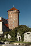 Château de Wawel Photos stock