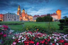 Château de Wawel, Cracovie Photographie stock libre de droits