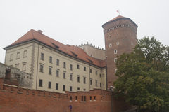 Château de Wawel, Cracovie, Pologne Photographie stock libre de droits