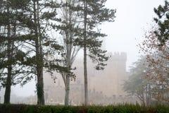 Château de Xavier un jour brumeux (Espagne) Images stock