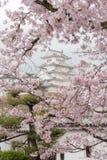 Château du Japon Himeji, château blanc de héron dans le beau che de Sakura Images libres de droits