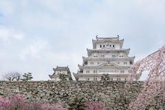 Château du Japon Himeji, château blanc de héron dans le beau che de Sakura Photo libre de droits