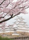 Château du Japon Himeji, château blanc de héron dans le beau che de Sakura Image libre de droits